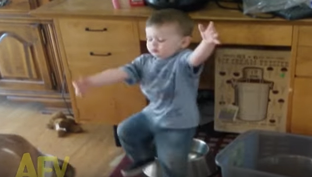 Little boy attempts to feed the dog, falls in the water bowl instead